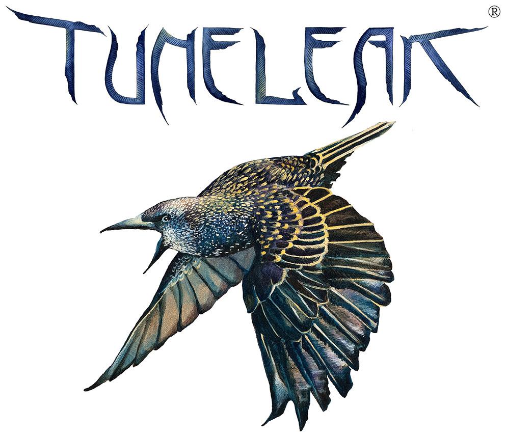 TuneLeak